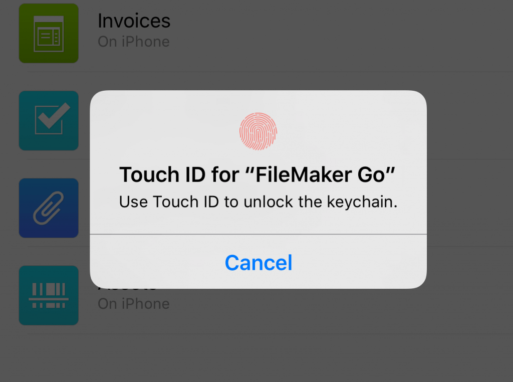 FileMaker Go 15 Touch ID