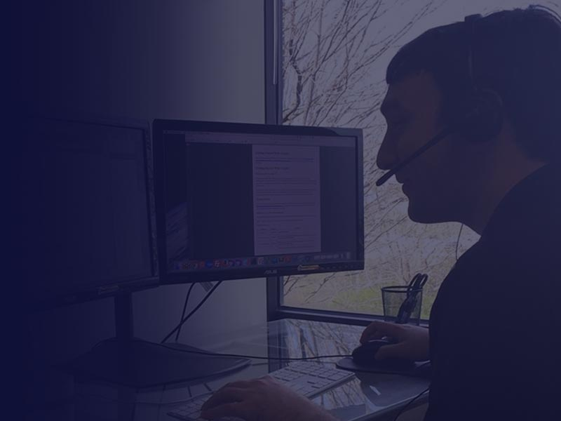 Software Consultant Working